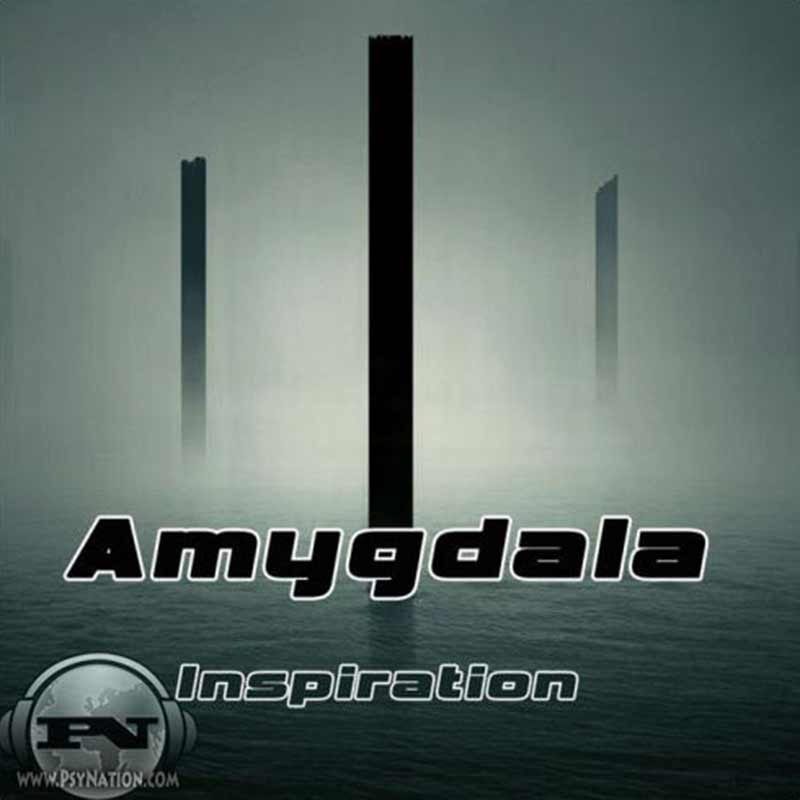 Amygdala - Inspiration