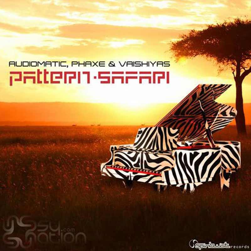 Audiomatic, Phaxe & Vaishiyas - Pattern Saffari
