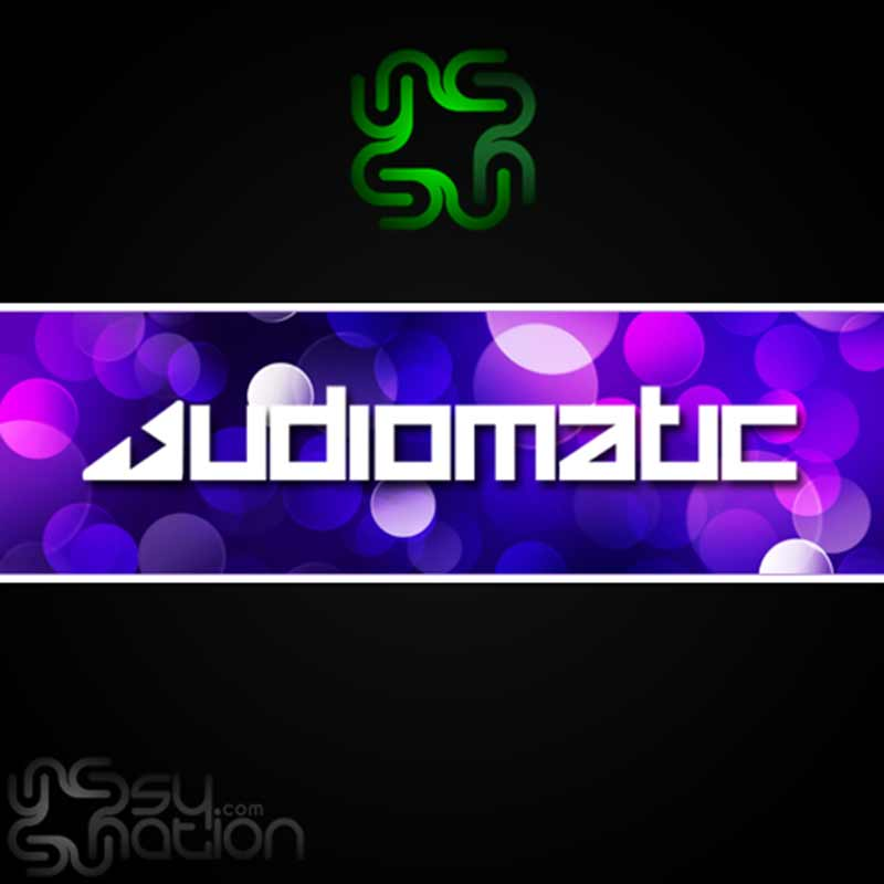 Audiomatic - Winter 2013 (Set)