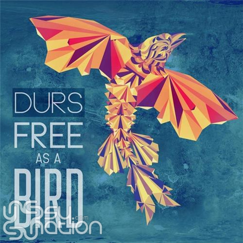 Durs - Free As A Bird