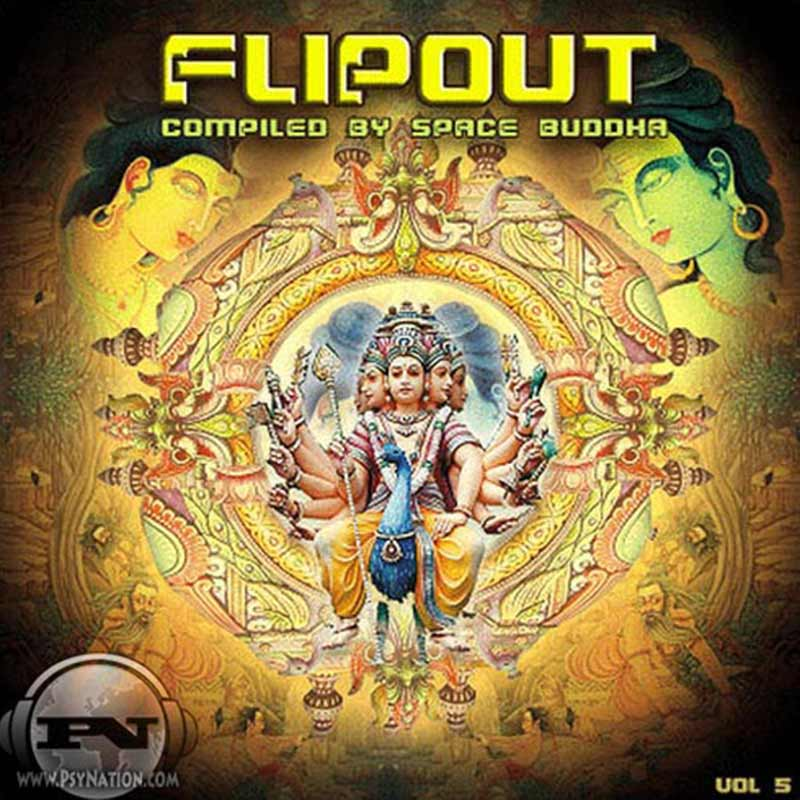 V.A. - Flip Out Vol. 5 (Compiled by Space Buddha)