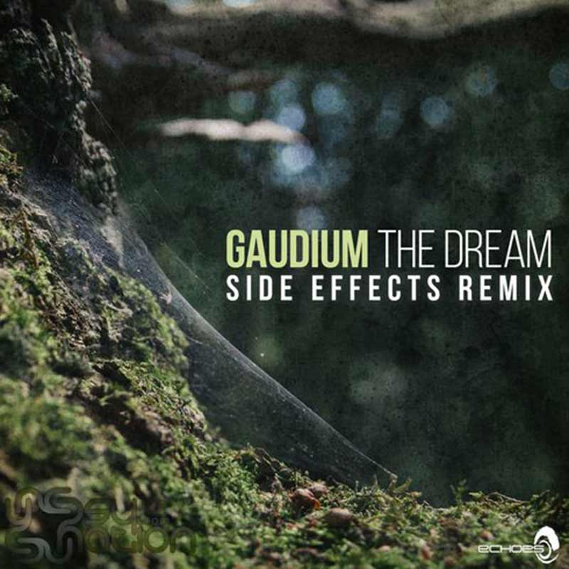 Gaudium - The Dream (Side Effects Remix)