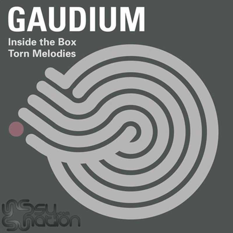 Gaudium - Inside The Box And Torn Melodies