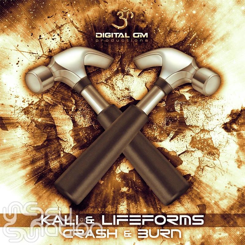 Kali & Lifeforms - Crash & Burn