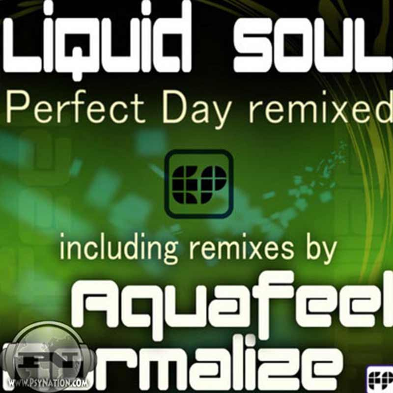 Liquid Soul - Perfect Day Remixed
