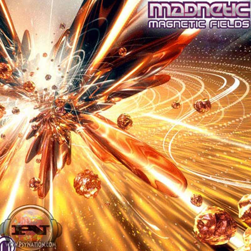 Mad Netic - Magnetic Fields