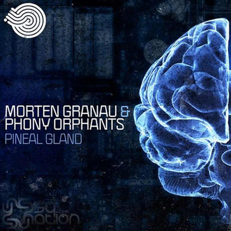 Morten Granau & Phony Orphants - Pineal Gland