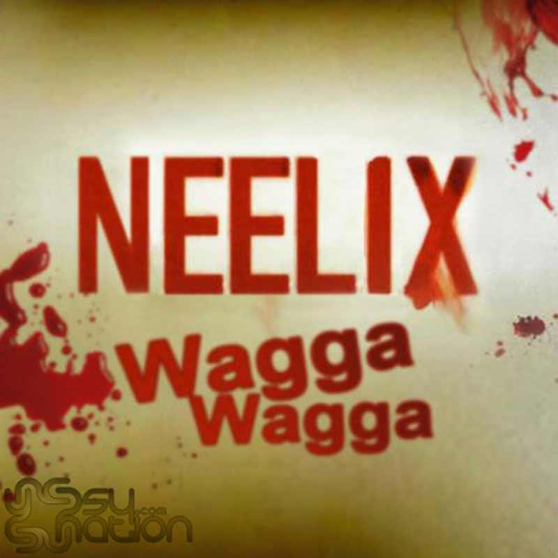 Neelix - Wagga Wagga