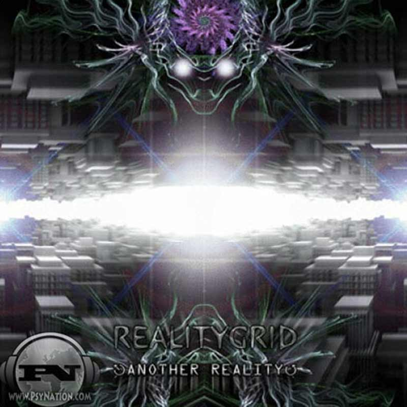 RealityGrid - Another Reality