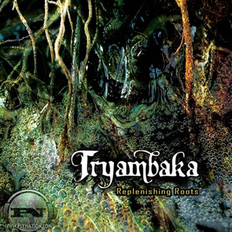 Tryambaka - Replenishing Roots