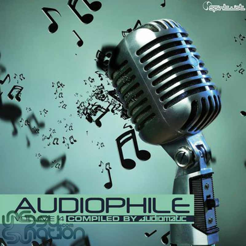 V.A. - Audiophile Vol. 4 (Compiled by Audiomatic)