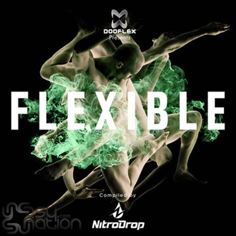 V.A. - Flexible (Compiled by NitroDrop)