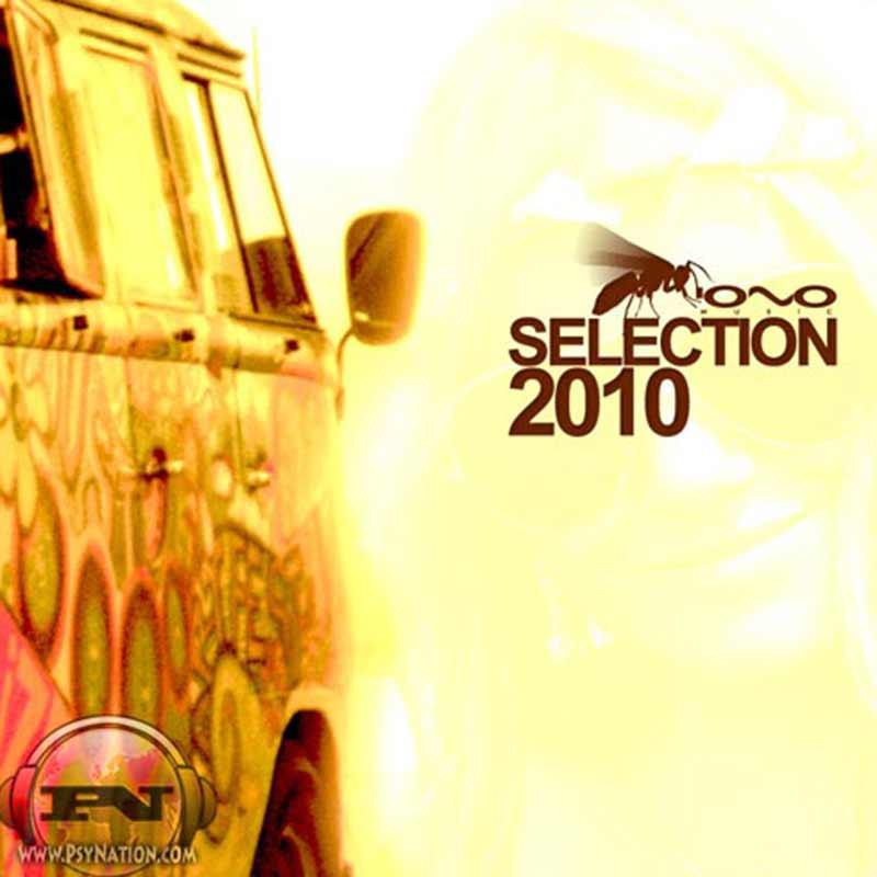 V.A. - Selection 2010