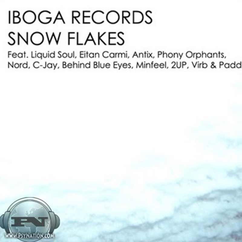 V.A. - Snow Flakes (Compiled by Emok & Banel)