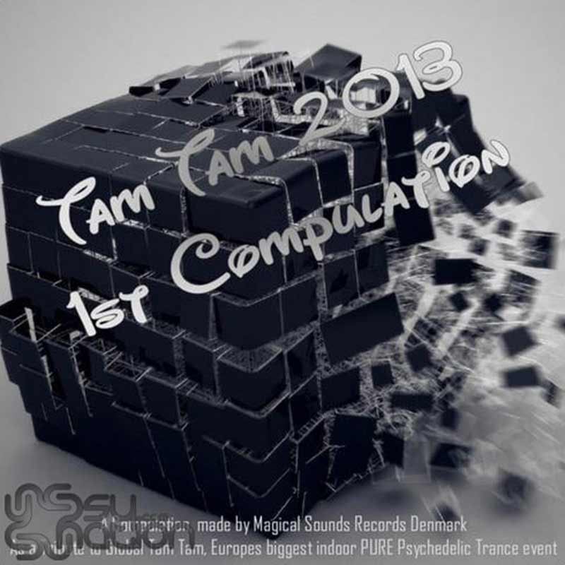 V.A. - Tam Tam 2013: 1st Compulation