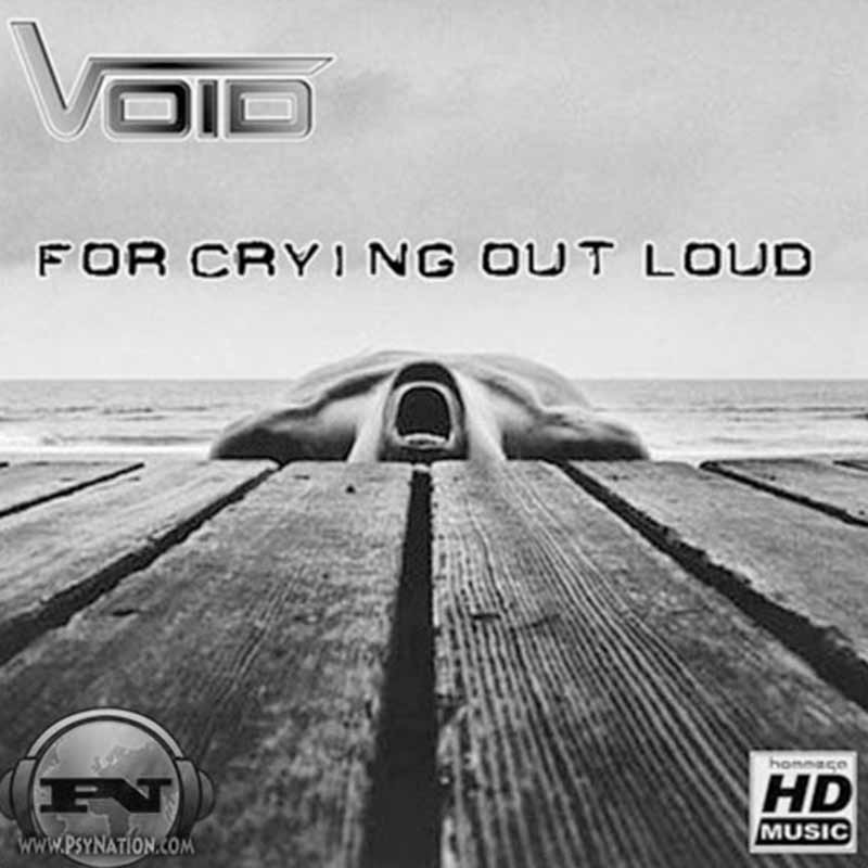 Void - For Crying Out Loud