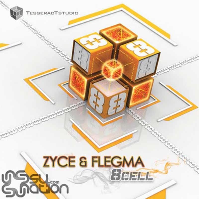 Zyce & Flegma - 8 Cell