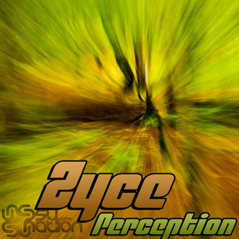 Zyce - Perception